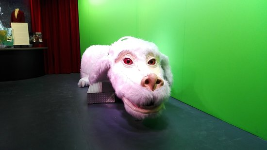 At a German Film Studio You Can Ride Falkor and See Props From The Never Ending Story